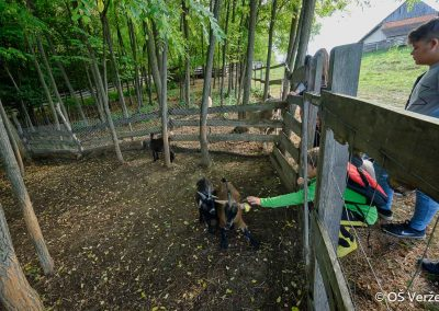 ND - Ekološko kmetovanje - OŠ Veržej 14