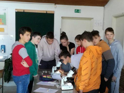 ND: Mikrobiologija in biotehnologija